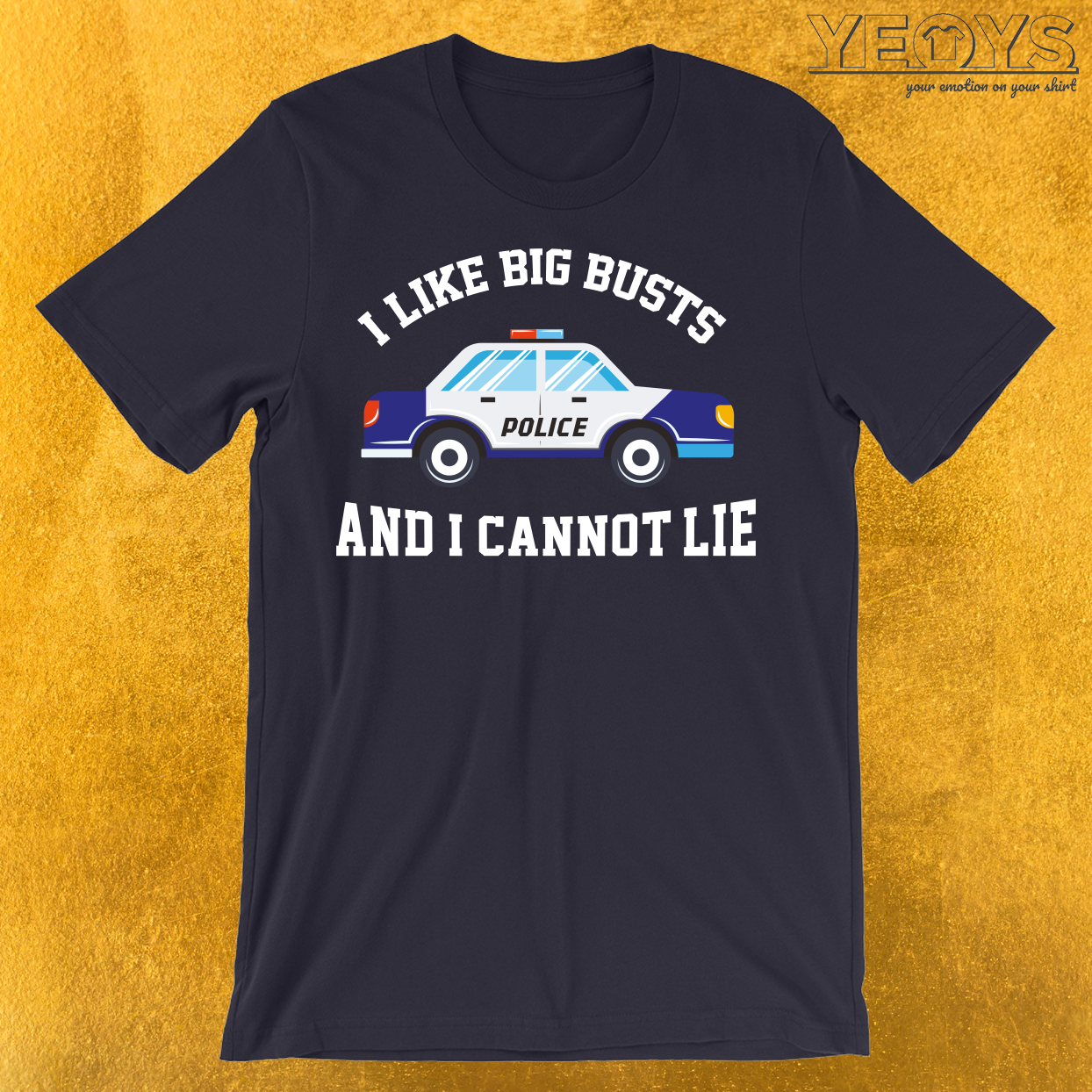 I Like Big Busts And I Cannot Lie T-Shirt
