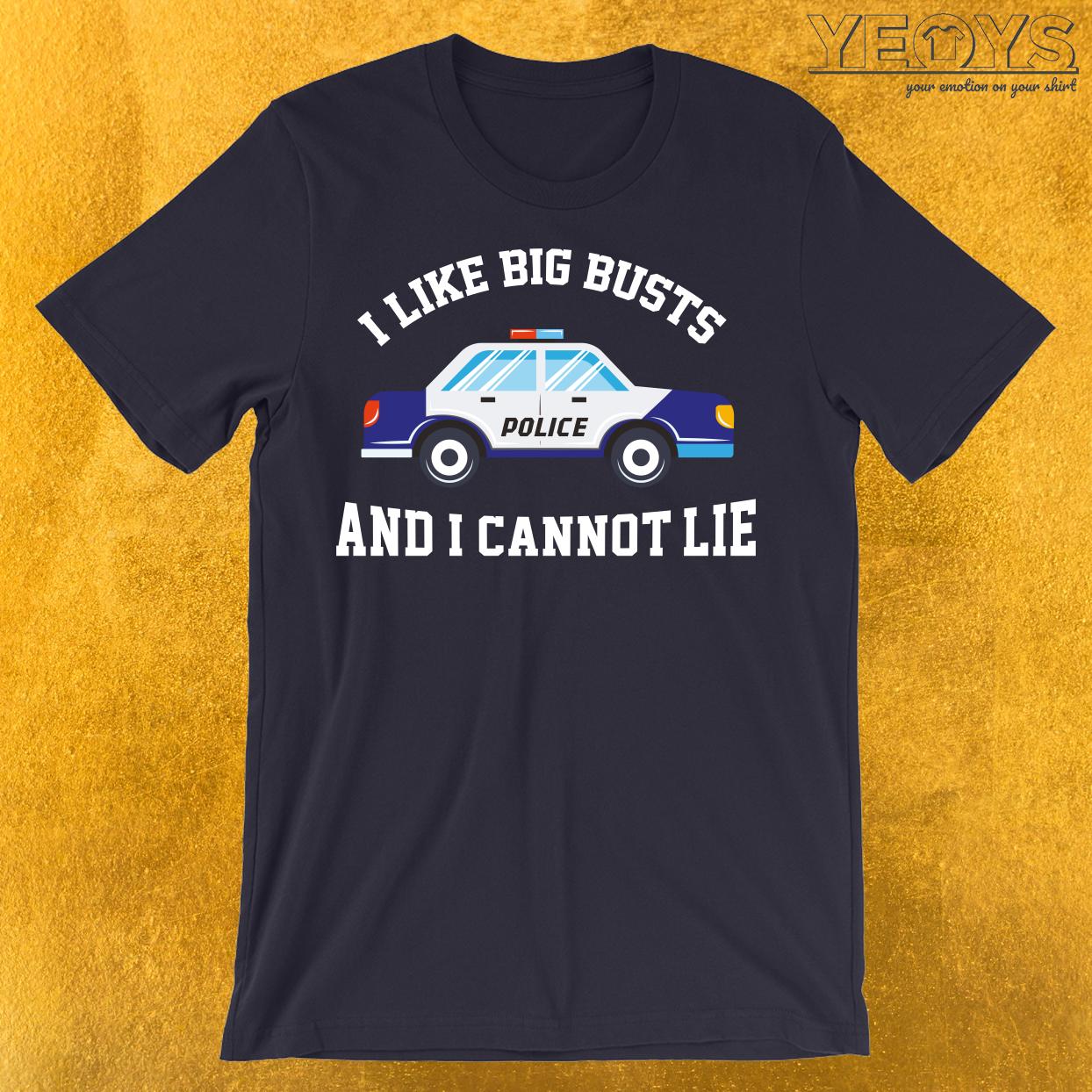 I Like Big Busts And I Cannot Lie T-Shirt