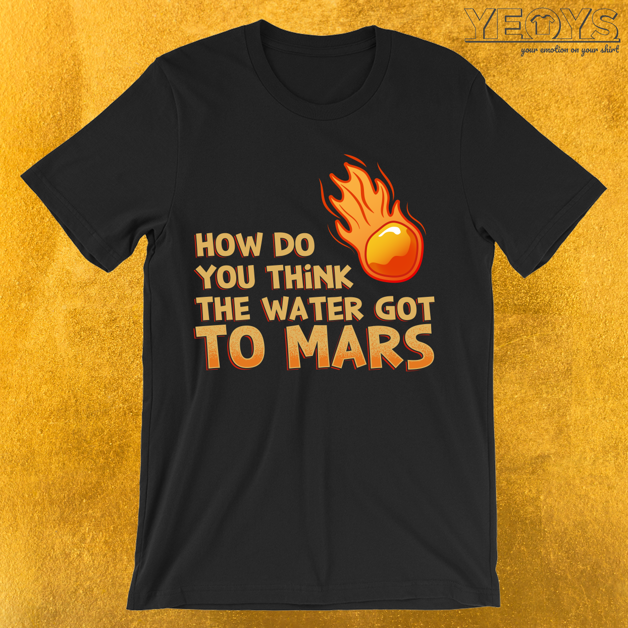How Do You Think The Water Got To Mars Comet T-Shirt