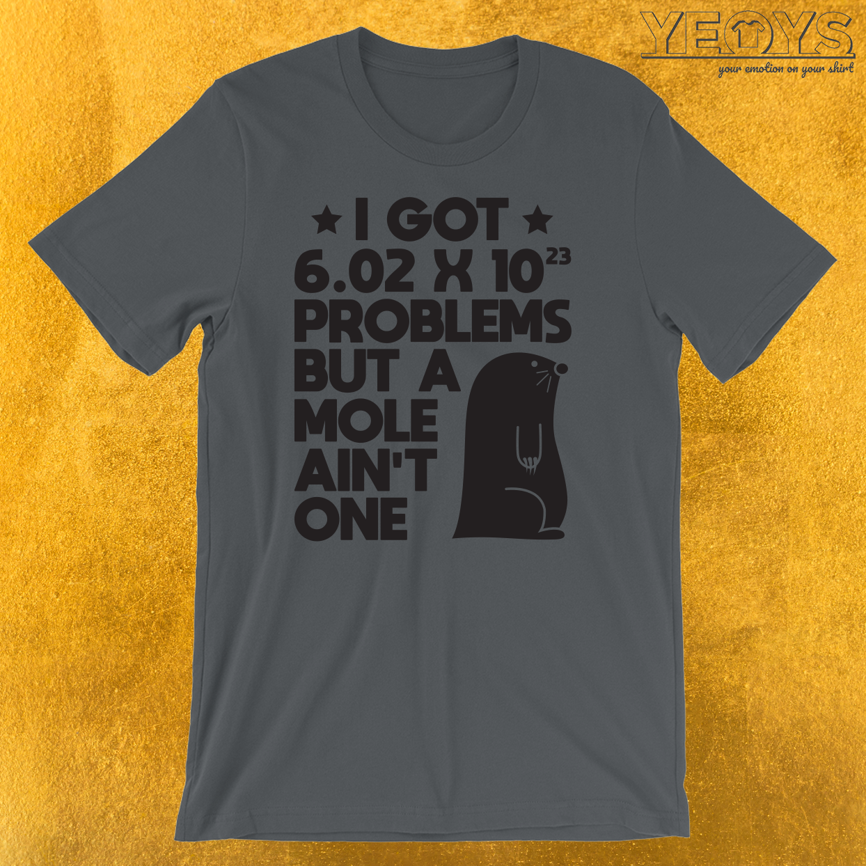 Mole Day Problems Avogadro's Number T-Shirt