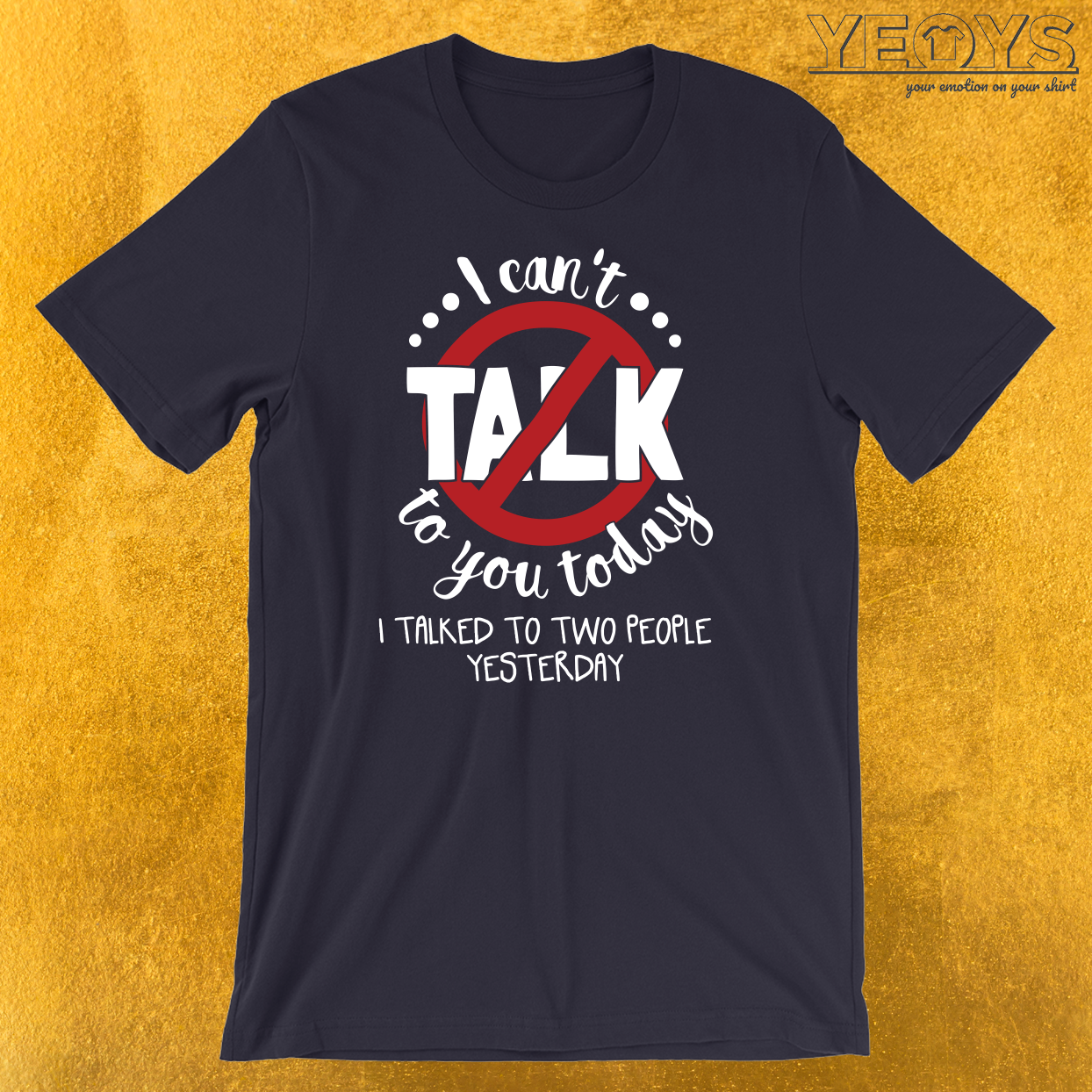 I Can't Talk To You Today Introverts T-Shirt