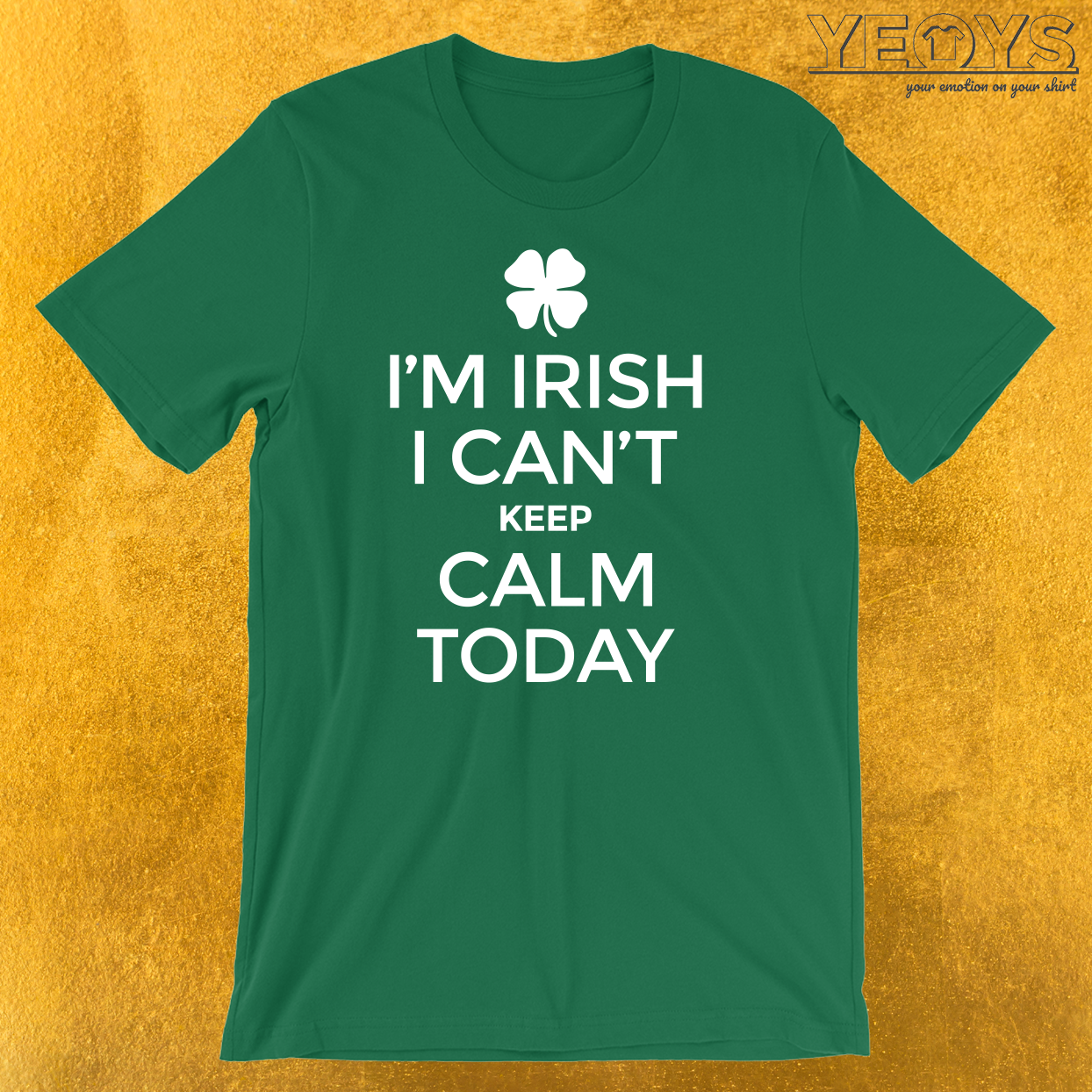 I'm Irish I Can't Keep Calm Today T-Shirt
