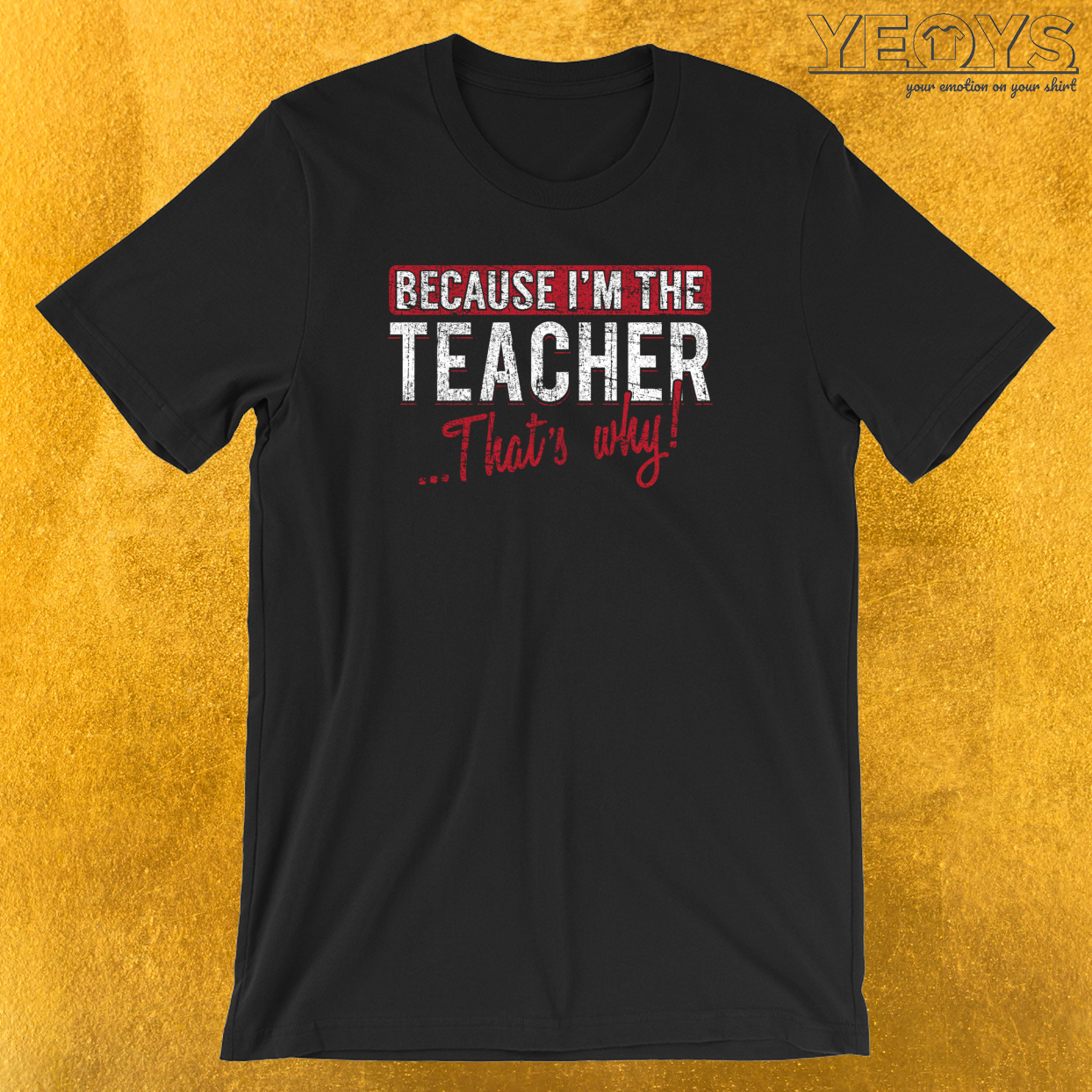 Because I'm The Teacher That's Why T-Shirt